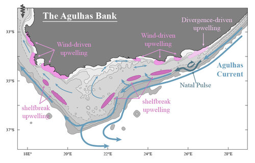 Forced vs Intrinsic variability of the Agulhas Bank circulation